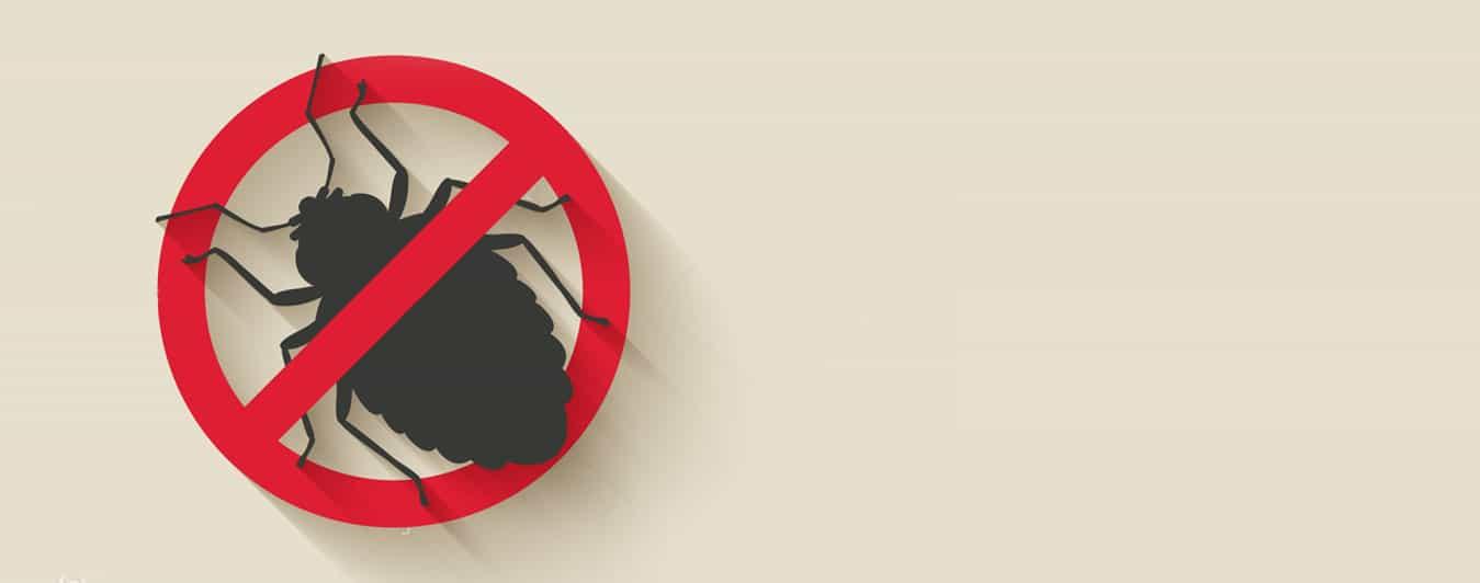 Wildlife Pest Control Experts Ancaster, Burlington, Hamilton, Oakville