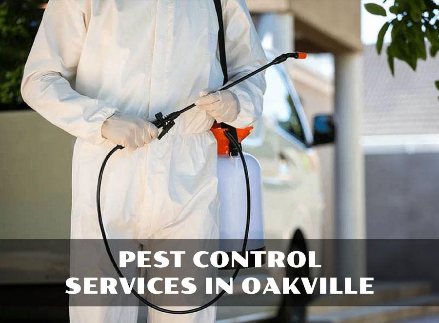 Pest Control Services in Oakville