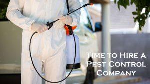 Hire a Pest Control Company