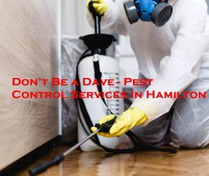 Pest Control Services In Hamilton