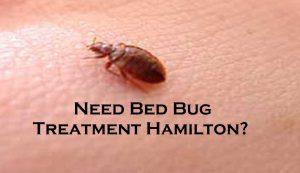 Need Bed Bug Treatment Hamilton?